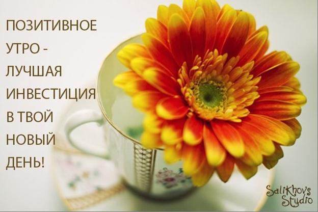 http://s0.uploads.ru/1VeHF.png
