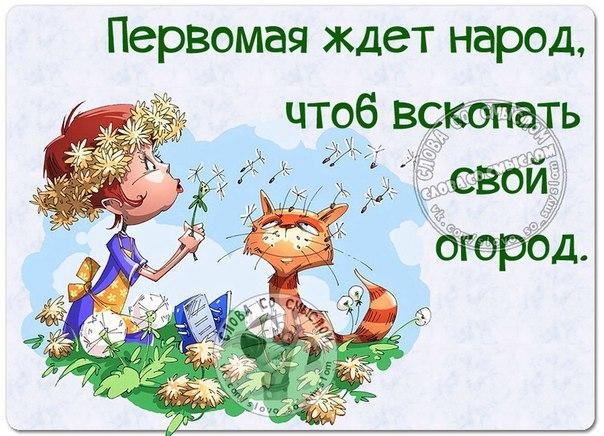 http://s0.uploads.ru/1aioh.jpg