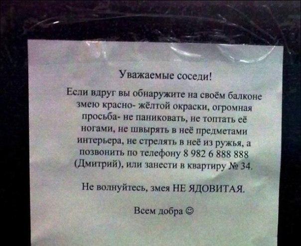 http://s0.uploads.ru/38sMp.jpg