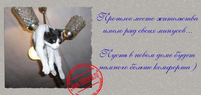 http://s0.uploads.ru/7KSgT.jpg