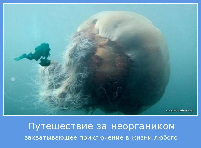 http://s0.uploads.ru/9ytDg.jpg