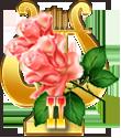 Победитель в Хит-параде лучших песен о цветах 2017