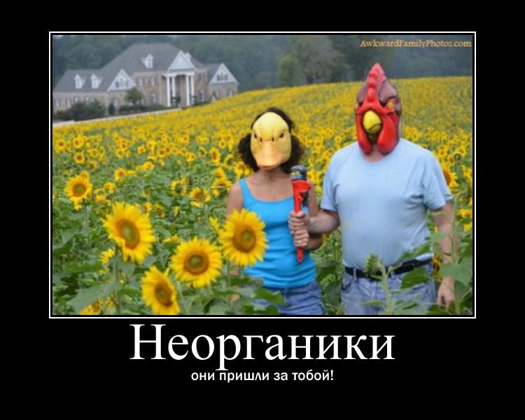 http://s0.uploads.ru/Bp21Y.jpg