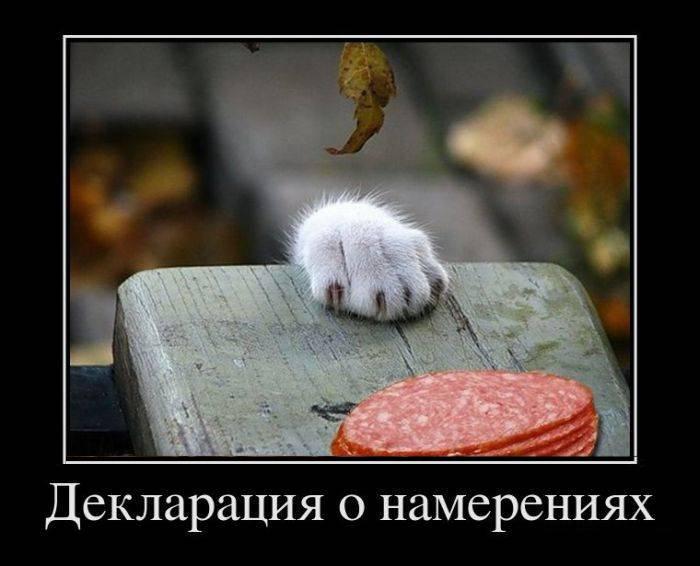 http://s0.uploads.ru/FeDrZ.jpg