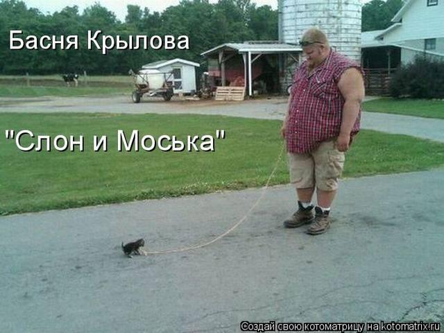 http://s0.uploads.ru/G1gTz.jpg
