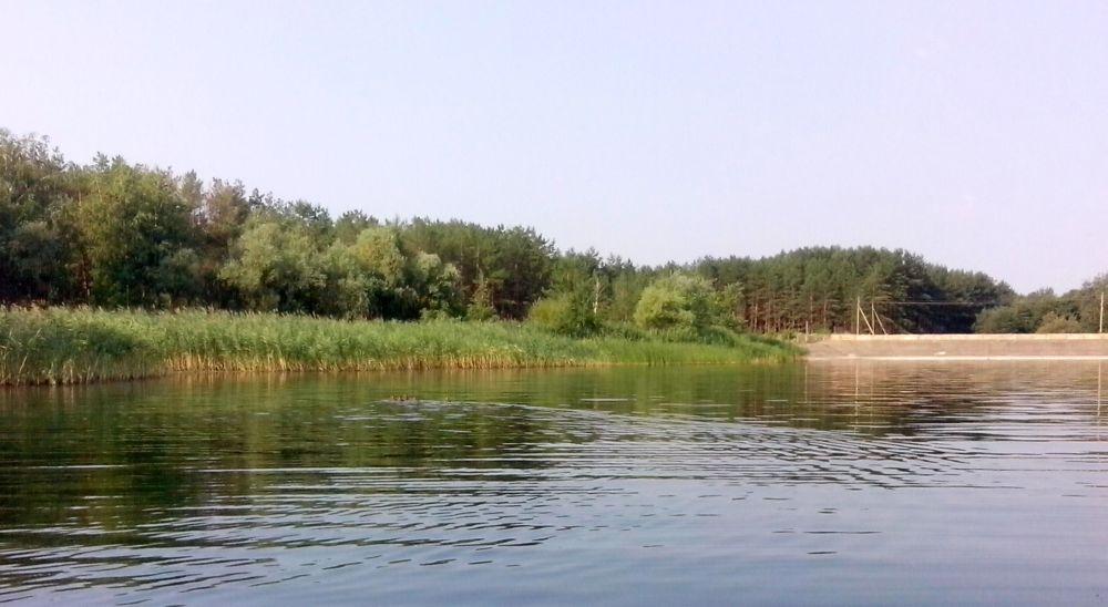 http://s0.uploads.ru/NTwtg.jpg