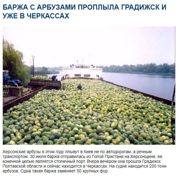 http://s0.uploads.ru/NzsMv.jpg