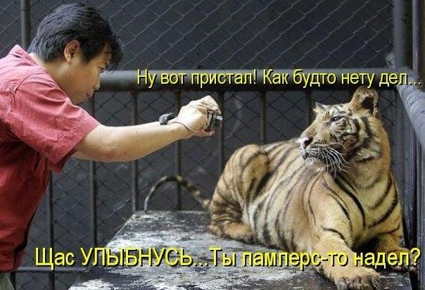 http://s0.uploads.ru/OH1P5.jpg