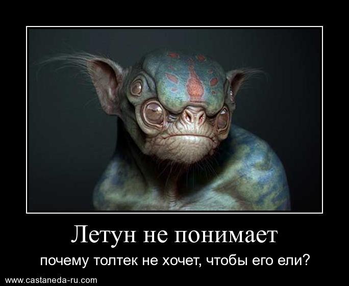 http://s0.uploads.ru/SYElu.jpg