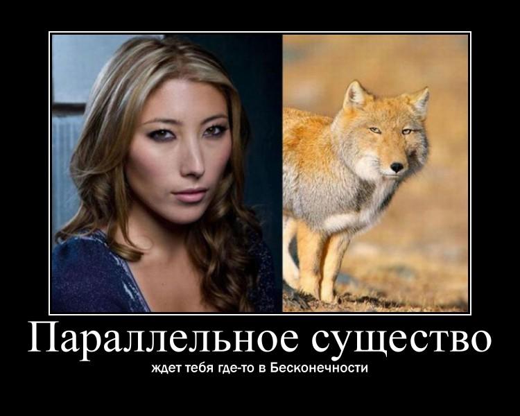 http://s0.uploads.ru/T3BM4.jpg