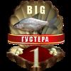 http://s0.uploads.ru/YuZJQ.png