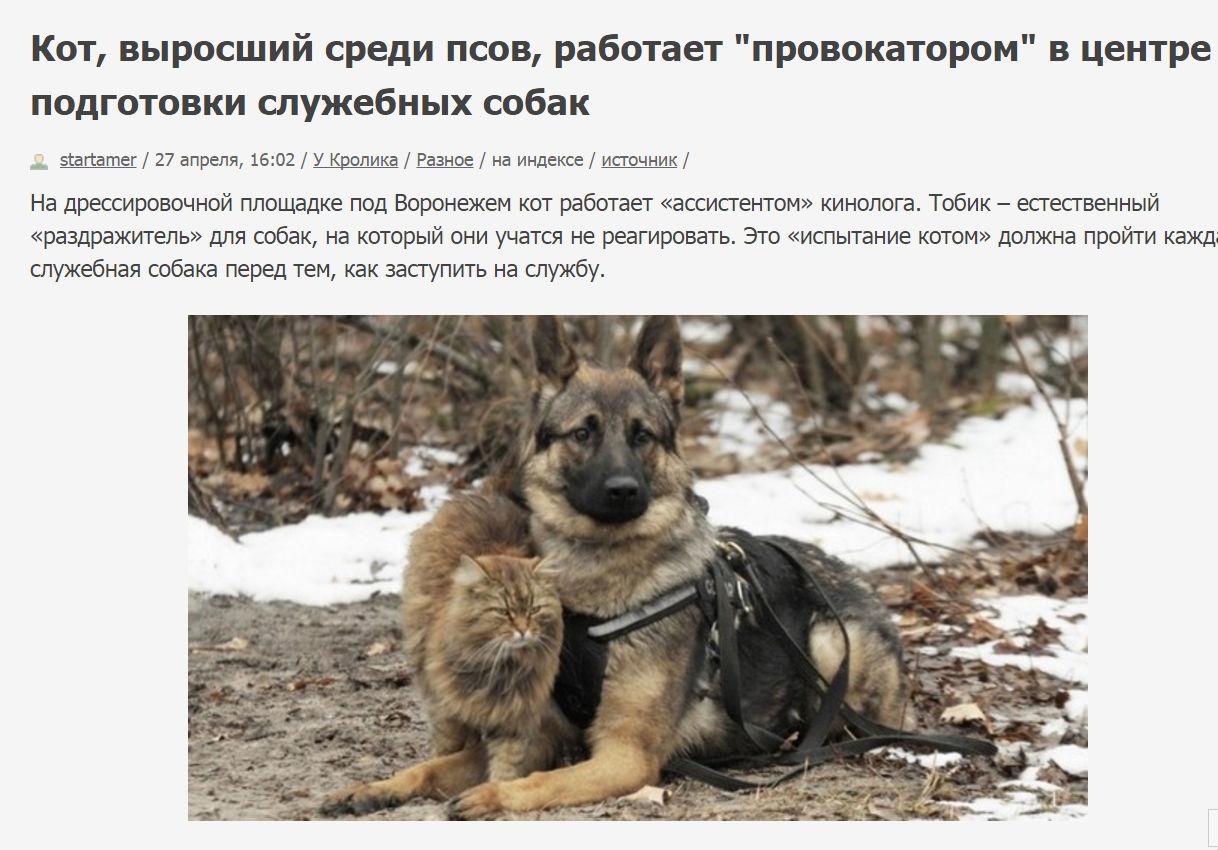 http://s0.uploads.ru/ZLXwf.jpg