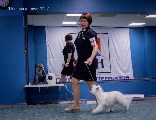 http://s0.uploads.ru/aJqy0.jpg