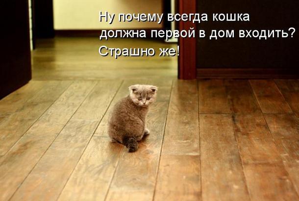http://s0.uploads.ru/anRkZ.jpg