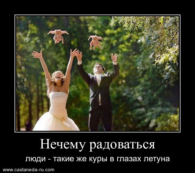 http://s0.uploads.ru/d2mEv.jpg