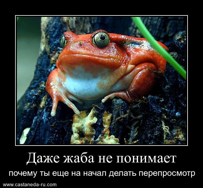 http://s0.uploads.ru/dPcp0.jpg