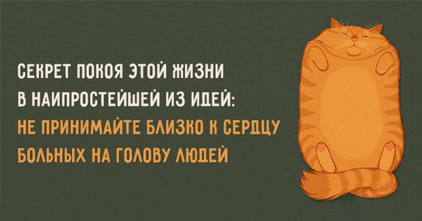 http://s0.uploads.ru/eIHYv.jpg