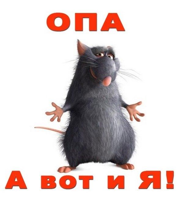 http://s0.uploads.ru/g0lOy.jpg