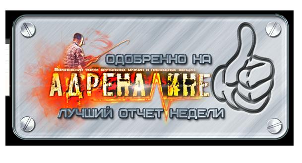 http://s0.uploads.ru/iAFXf.png