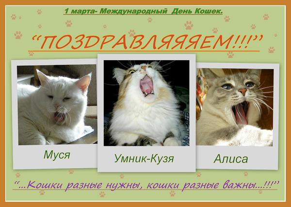 http://s0.uploads.ru/iKp0x.jpg