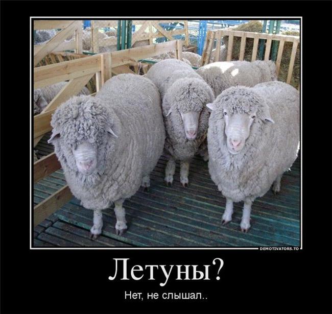 http://s0.uploads.ru/igw1l.jpg