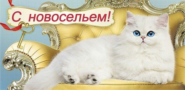 http://s0.uploads.ru/m2bN0.jpg