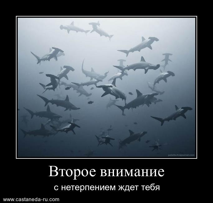http://s0.uploads.ru/mVPe9.jpg