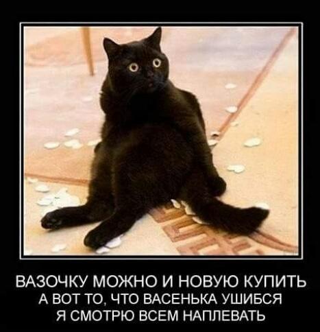 http://s0.uploads.ru/og9Kd.jpg