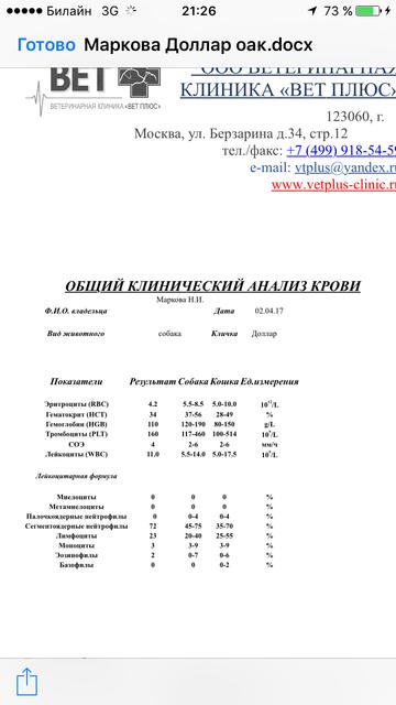 http://s0.uploads.ru/t/0Nl6A.png