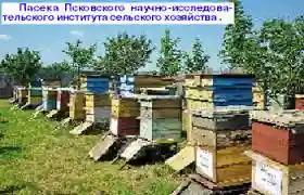 http://s0.uploads.ru/t/0PzEN.jpg