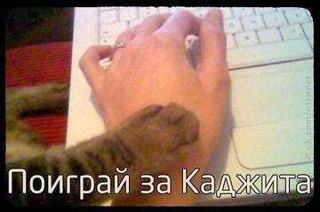 http://s0.uploads.ru/t/0zqGB.jpg