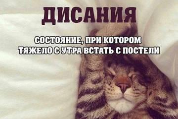 http://s0.uploads.ru/t/1Gqtm.jpg