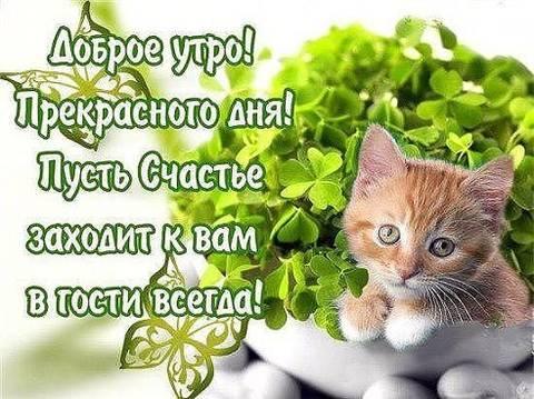 http://s0.uploads.ru/t/1gJKS.jpg