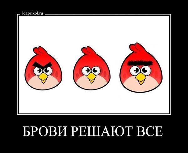 http://s0.uploads.ru/t/3LN4w.jpg