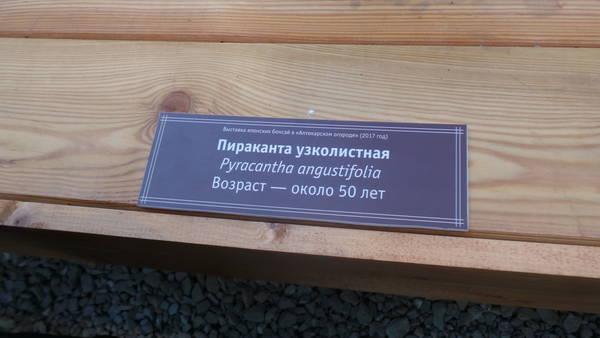 http://s0.uploads.ru/t/4wSth.jpg