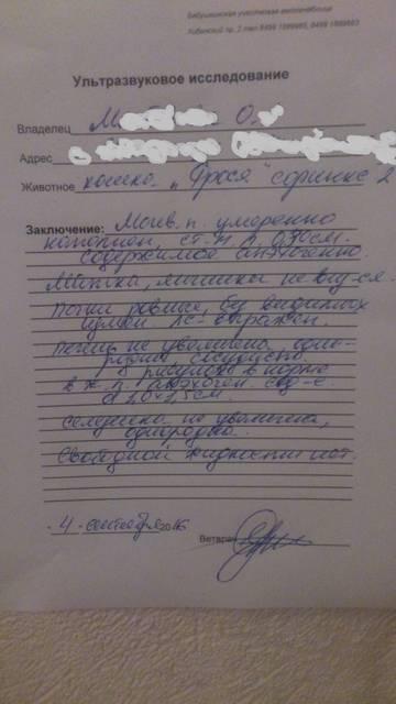 http://s0.uploads.ru/t/6MjJ4.jpg