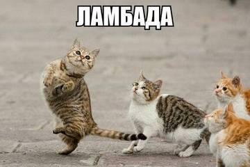 http://s0.uploads.ru/t/6mJAH.jpg
