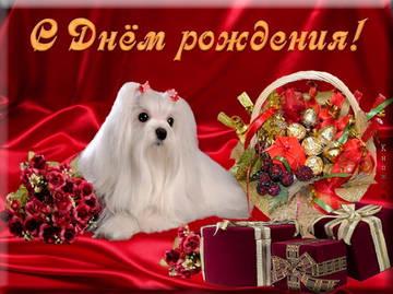 http://s0.uploads.ru/t/7FuMo.jpg