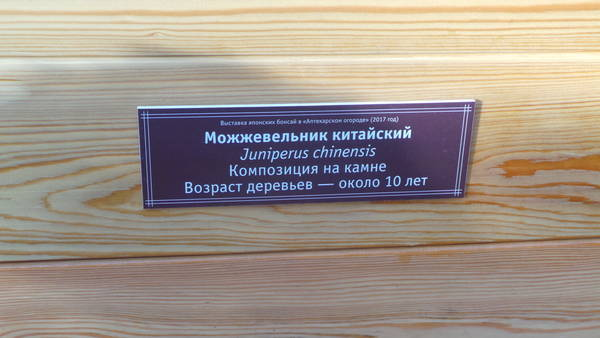 http://s0.uploads.ru/t/8YQhs.jpg