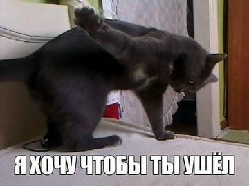 http://s0.uploads.ru/t/9WQGV.jpg