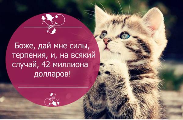 http://s0.uploads.ru/t/AIZ5S.jpg