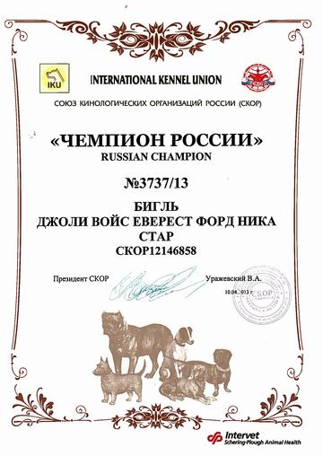 http://s0.uploads.ru/t/D2cAz.png