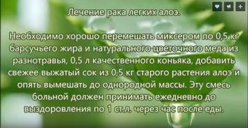 http://s0.uploads.ru/t/E9pr5.jpg