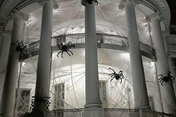 Арахноиды. Инсектоиды. Arachnoids. Insectoids.