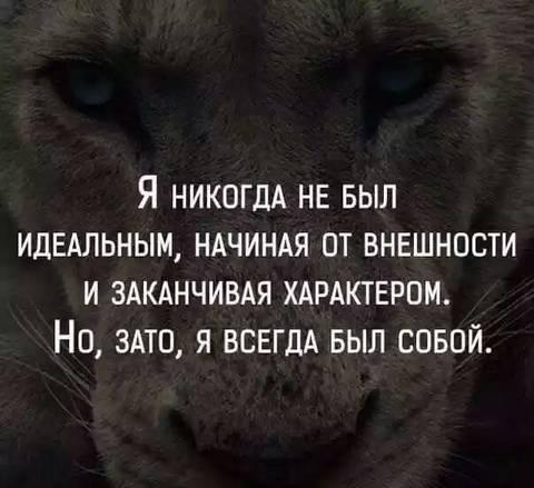 http://s0.uploads.ru/t/FX4Qs.jpg
