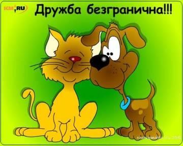 http://s0.uploads.ru/t/FqBpw.jpg