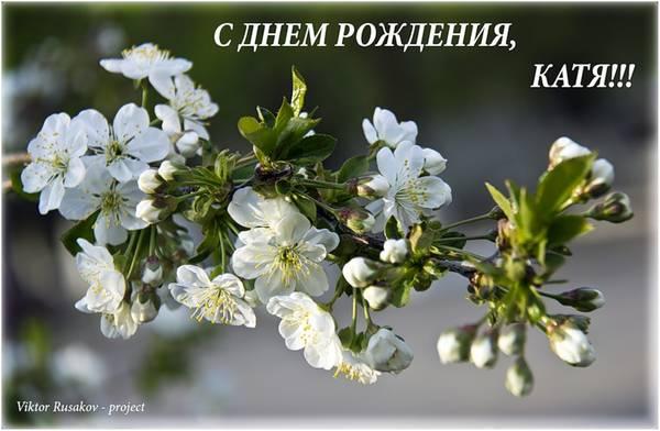 http://s0.uploads.ru/t/Fxfub.jpg