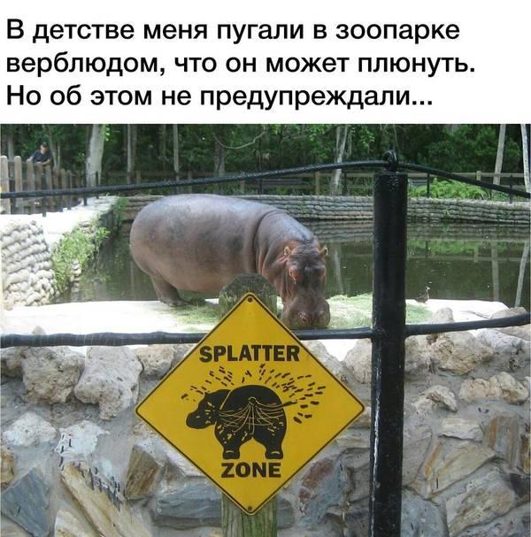http://s0.uploads.ru/t/HIbj2.jpg