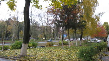 http://s0.uploads.ru/t/IBakp.jpg