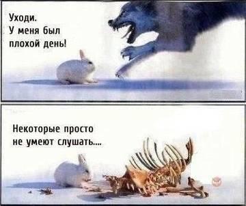 http://s0.uploads.ru/t/LZaJM.jpg